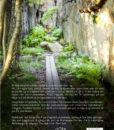 Promenadboken-Omslag-VER-B-BAK-161108